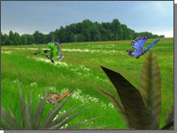 Reflexive 3D free ScreenSaver with beautiful landscape and colorful butterflies